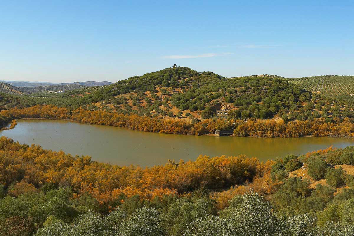 Reserva Natural Laguna Amarga (Lucena, Córdoba)