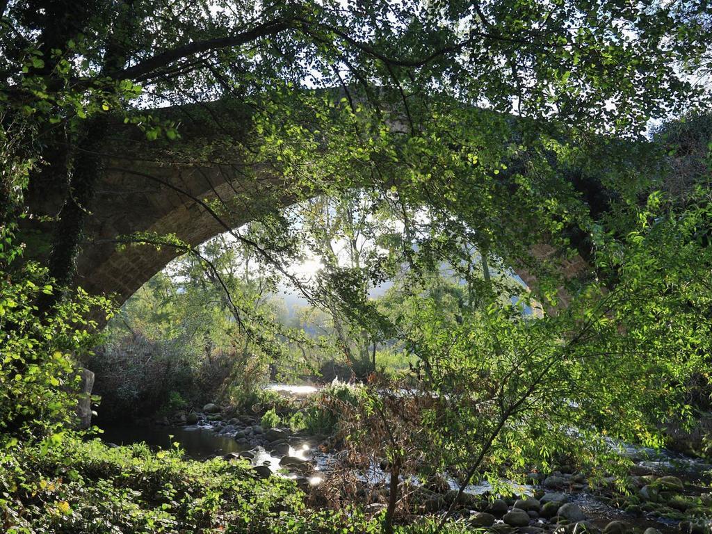 Parque-natural-de-cebollera-la-rioja
