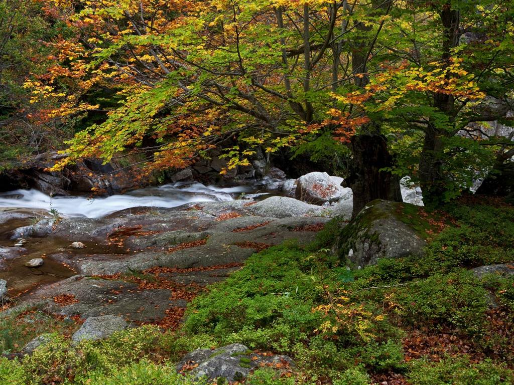 Parque-natural-de-posets-naladeta-huesca