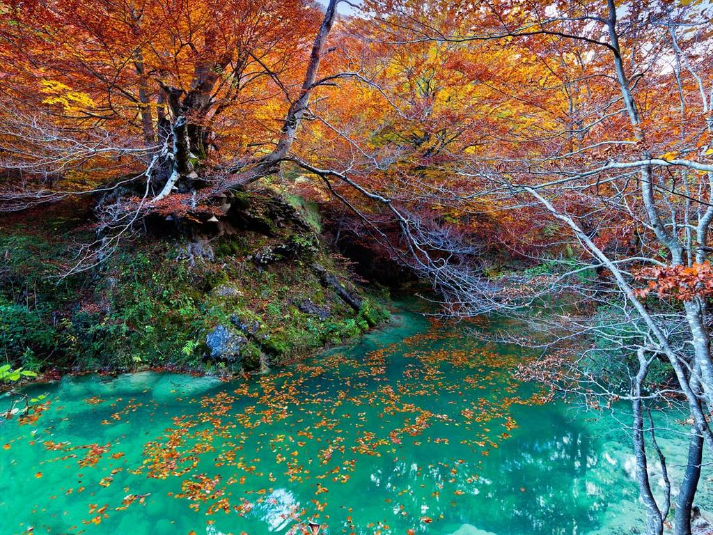 Parque-natural-de-urbasa-navarra